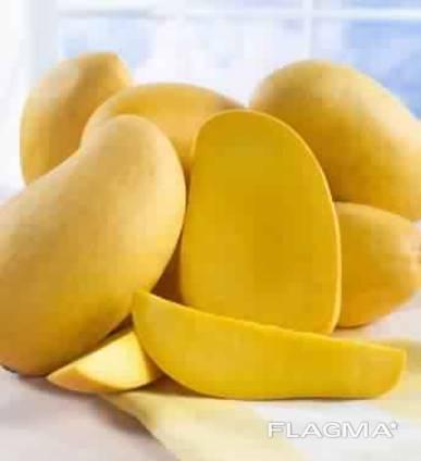 Mango at the lowest price. harvest 5/2019 .