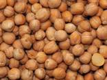 Chickpeas, lentils, peas, wheat, coriander from Russia - photo 2