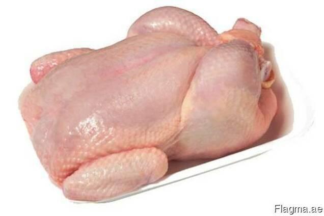Курица Броилер курица несушки