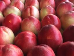Nektarin peachнектарины и персики