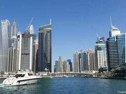 Резидентная компания с офисом в одной из свободных зон ОАЭ - фото 3