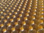 Sunflower oil - фото 6