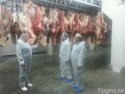 We sell beef and lamb Halal. - photo 2